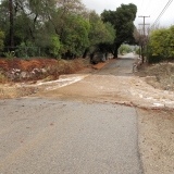 Reeves Creek at McNell Road-Lorraine Walter