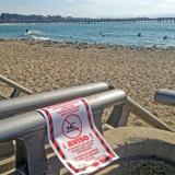 Ocean water quality warning-Ann Rosecrance